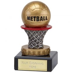 Netball Trophies | Discount Trophies